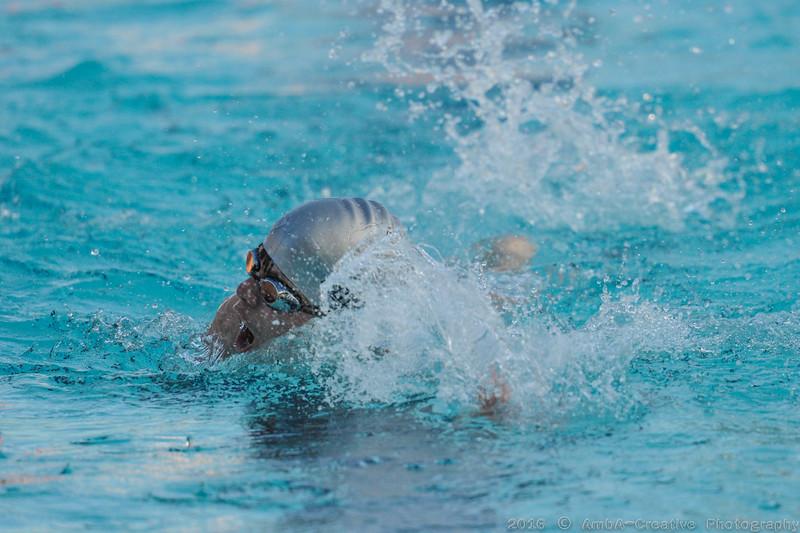 2016-06-29_HAC_SwimMeet_v_Dolphins@SkylineDE_065.jpg