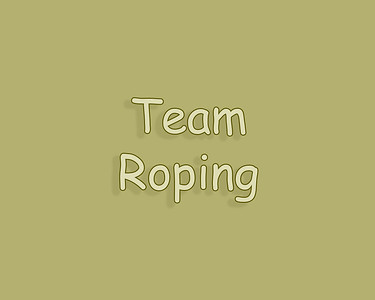 Patricia Rodeo 2018 Team Roping