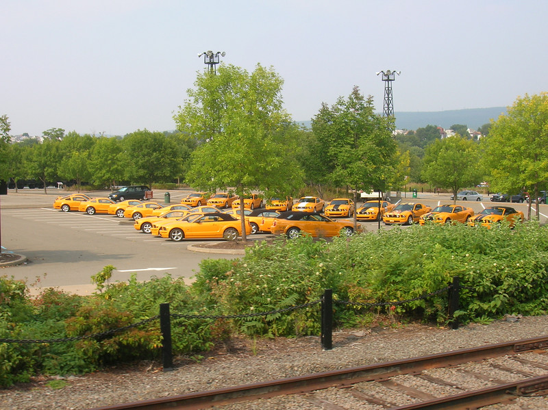 Viewing the Grove from the Scranton Express