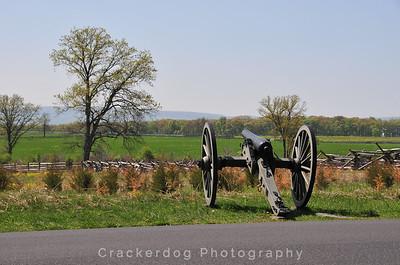 2010 Greyhounds in Gettysburg