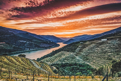 Douro Valley - Quinta Nova de Nossa Senhora do Carmo - Luxury Winery House