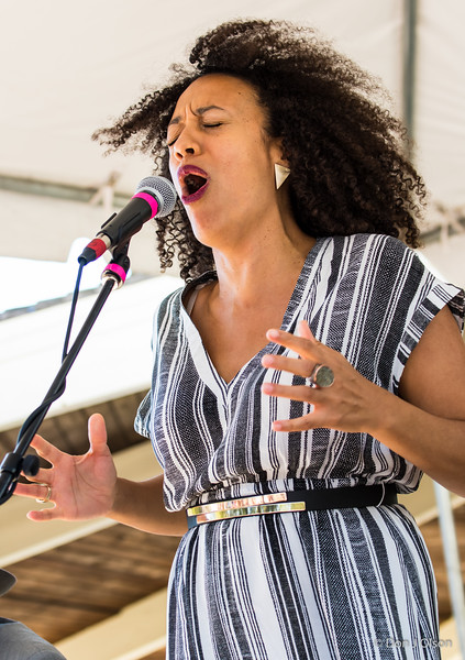 Chaney Sims--Heritage Blues Orchestra--Rock Bend Folk Festival 25, St. Peter MN.