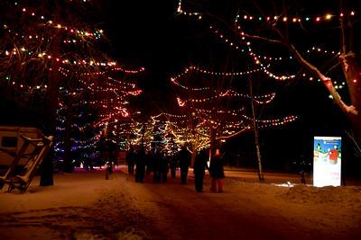 2017 Delta Christmas Lights