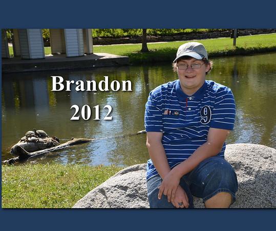 Brandons Book
