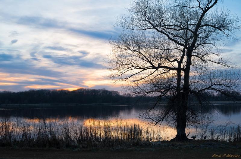 Lake Pastels