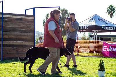Norco: Dog Sporting Event
