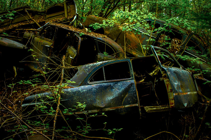 Old Junk Cars in the Woods