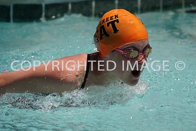 Piney Creek Heat Swim Team 2016