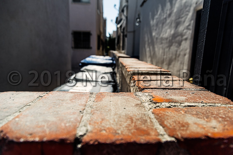 Bricks, Perspective and Garbage Cans