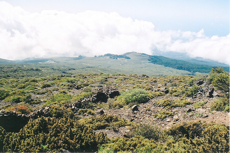 Hawaii-142.jpg