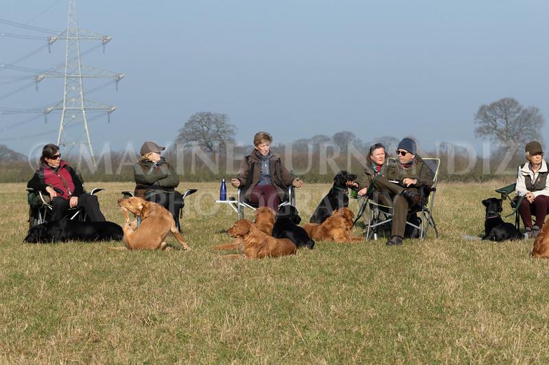 Dog Training Novice GD Feb2019-6005.jpg