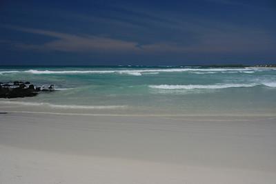 Galapagos 2011 #1