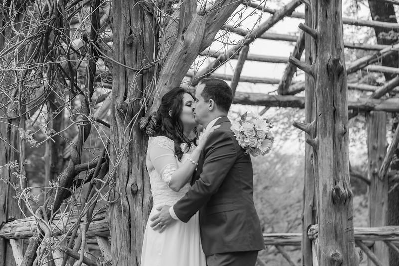 Central Park Wedding - Diana & Allen (185).jpg