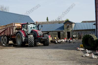 farm boerderij ferme
