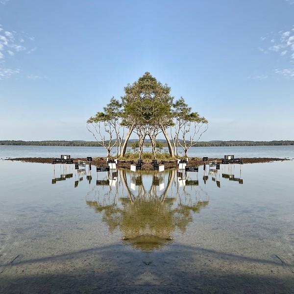 Reflections 6.jpg