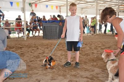 Allen County Fair 2018 (Saturday activities)
