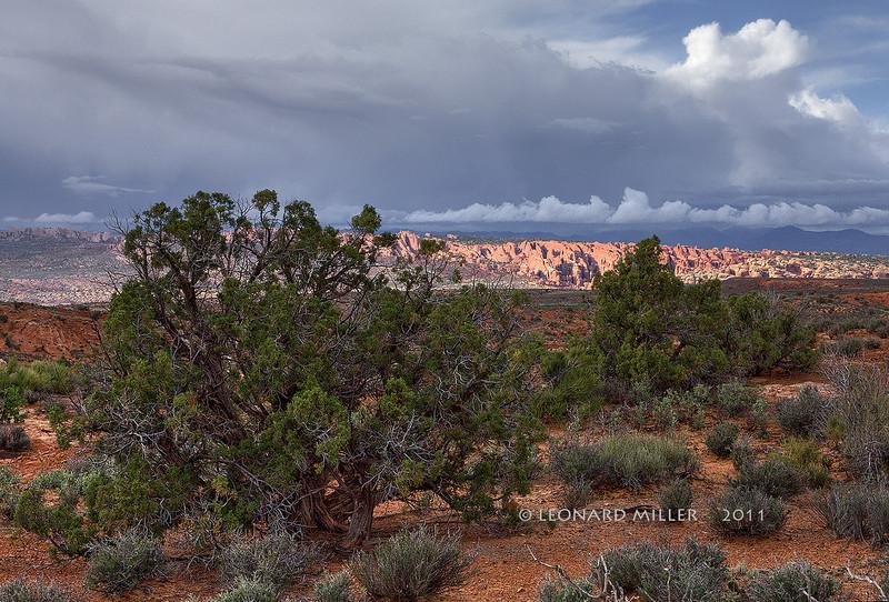 Devil's Garden (sunlit, distance) - Arches National Park - Utah