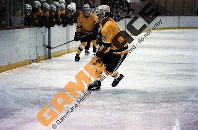 AIC Men's Hockey