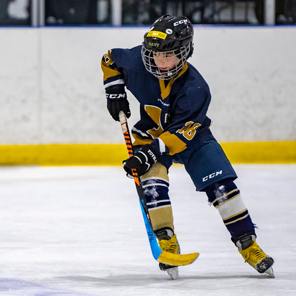 2019-02-03-Ryan-Naughton-Hockey-39.jpg