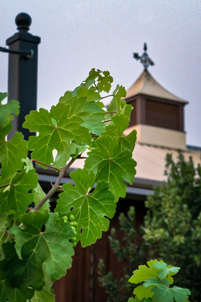 Wine Barn Sunrise HDR 2 (1 of 1).jpg