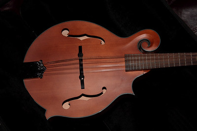 Mandolin for sale