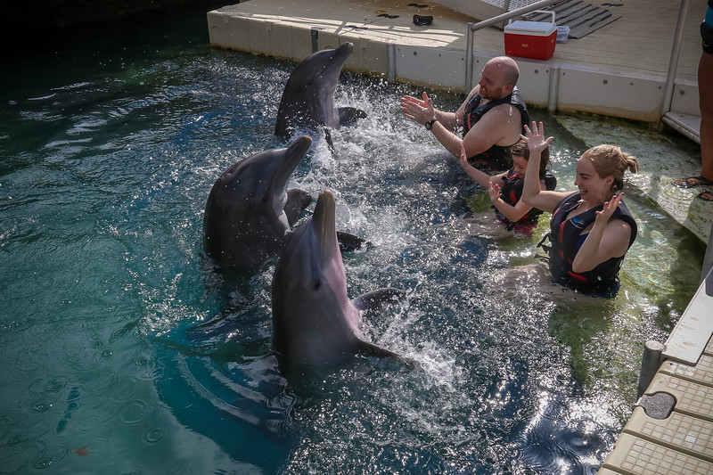 2019 August Dolphin Quest-131.jpg