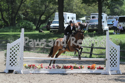 Ring 1: Pre-Children's Equitation