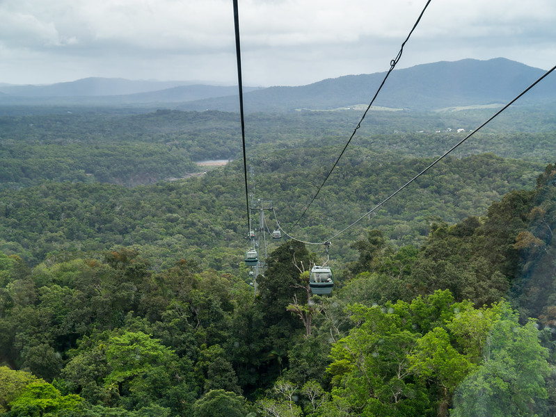 Skyrail Rainforest