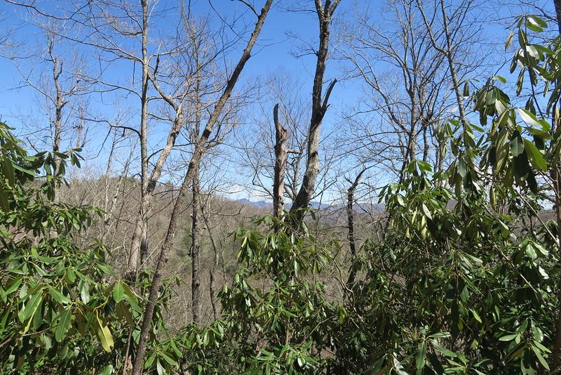 Devils Elbow Trail - 3,790'