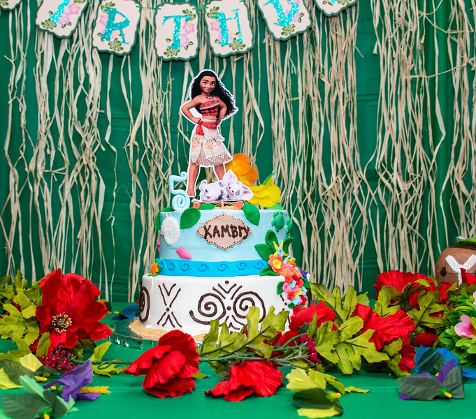 Kambry's 5th Birthday-19.jpg