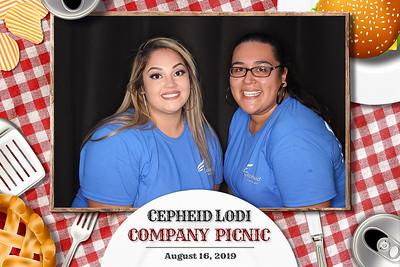 Cepheid Lodi Company Picnic 2019