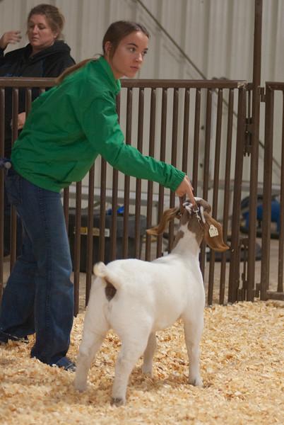 kay_county_showdown_goats_20191207-135.jpg