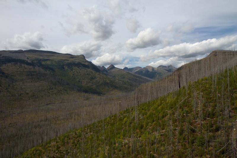 01_Glacier National Park_Montana-30.jpg