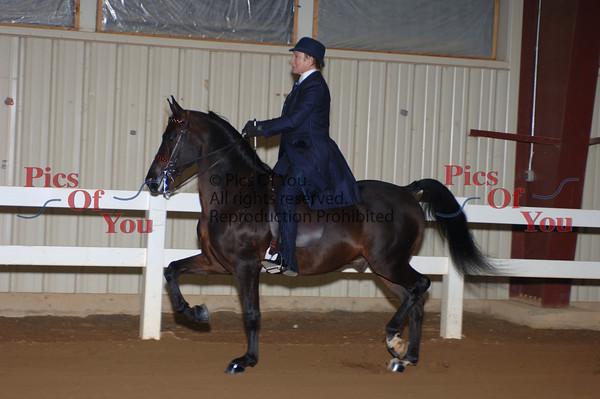 CLASS 030 Ladies Classic Pleasure Saddle