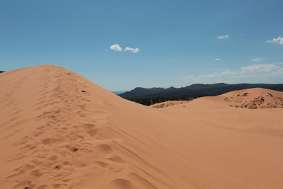 Canon: 2013-09-15: 02 Coral Pink Sand Dunes