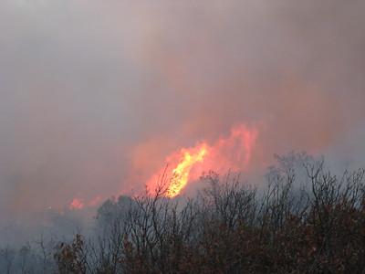 Waterton Canyon Fire