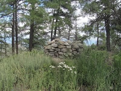 Jemez Mtns. - Bear Springs Peak Hike  8-10-15