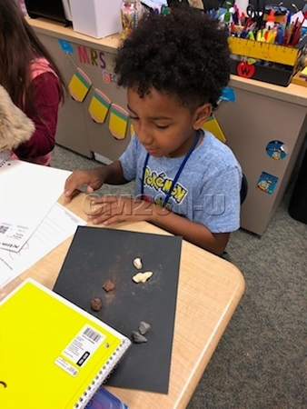 Mrs. Williams' - Rocks and Properties
