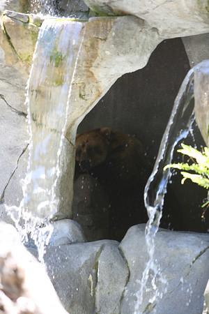 San Diego Zoo 2006