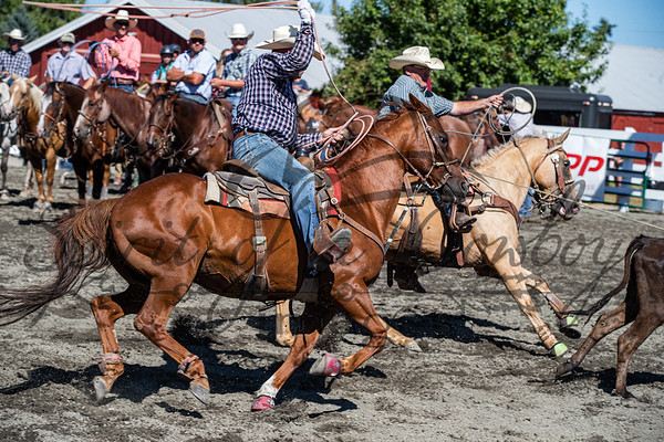 Triple H Barrel Race and Roping