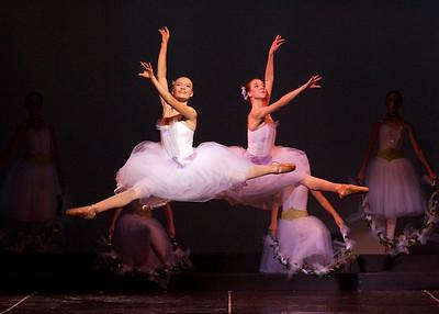 2011 Portraits of a Dancer