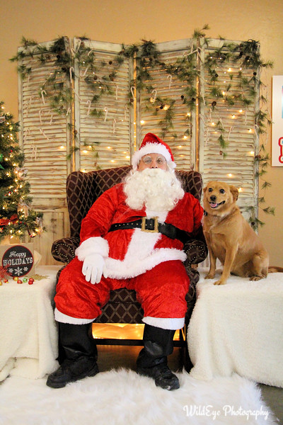 2016 Santa Paws - Lucy