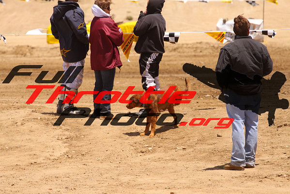 Race 6 & 7