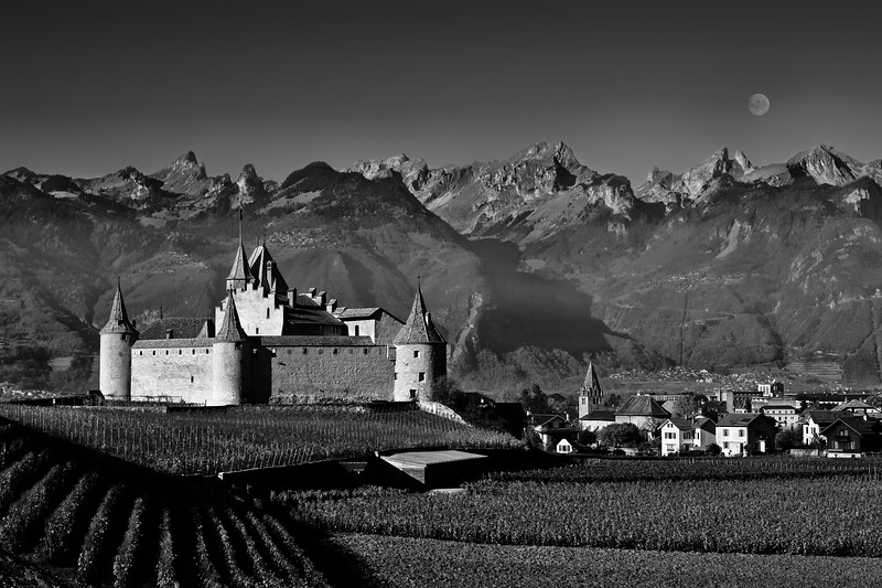 Castle in Aigle