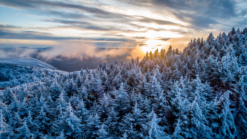 2020-01-29_SN_KS_Frosty Trees Sunset 0039.jpg