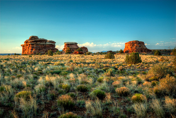 Canyonlands National Park 2008