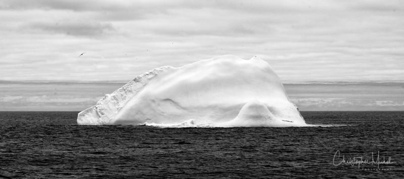 091203_iceberg_7005s.jpg