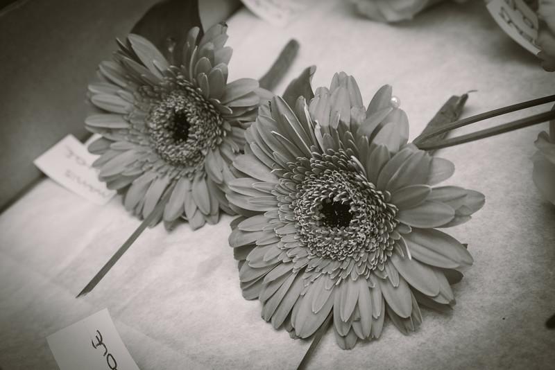 Herman Wedding-12.jpg