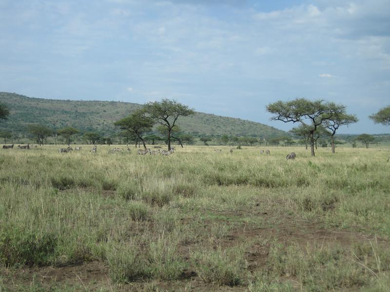 Tanzania14-3524.jpg