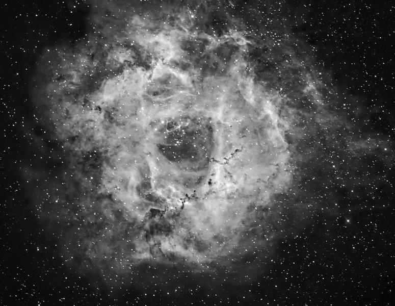 RW PRE processed_NGC 2244_B&W crop.jpg